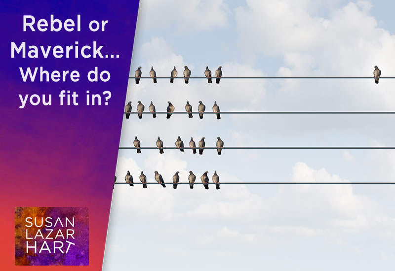 Rebel or Maverick... Where do you fit in?